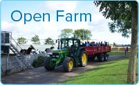 bg-box-item-open-farm